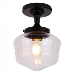 Lámpara de techo plafón, Serie Michigan, armazón metálico en acabado negro, 1 luz, con cristal transparente.